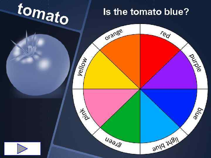 toma to Is the tomato blue?