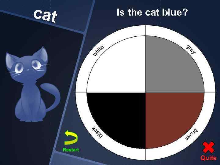 cat Is the cat blue?