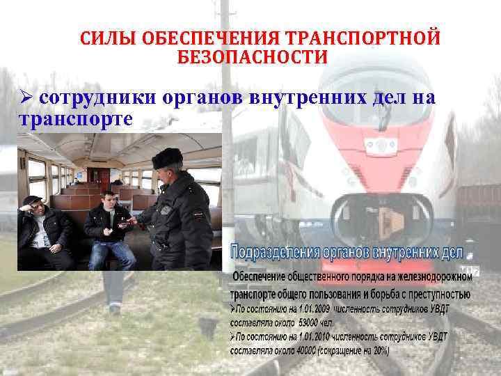 СИЛЫ ОБЕСПЕЧЕНИЯ ТРАНСПОРТНОЙ БЕЗОПАСНОСТИ сотрудники органов внутренних дел на транспорте
