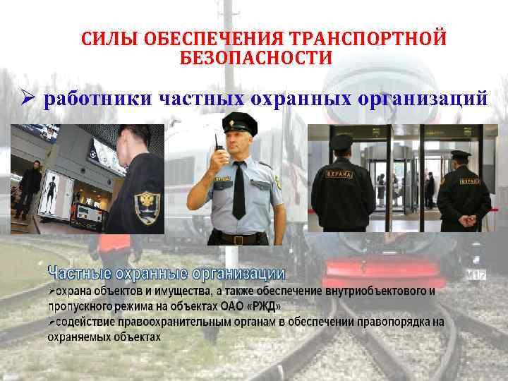 СИЛЫ ОБЕСПЕЧЕНИЯ ТРАНСПОРТНОЙ БЕЗОПАСНОСТИ работники частных охранных организаций