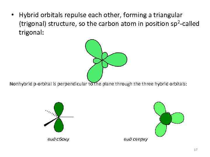 • Hybrid orbitals repulse each other, forming a triangular (trigonal) structure, so the