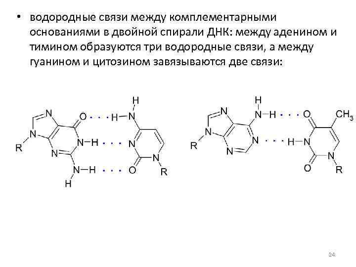 • водородные связи между комплементарными основаниями в двойной спирали ДНК: между аденином и