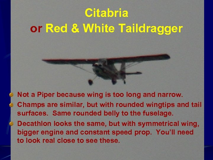 Citabria or Red & White Taildragger Not a Piper because wing is too long