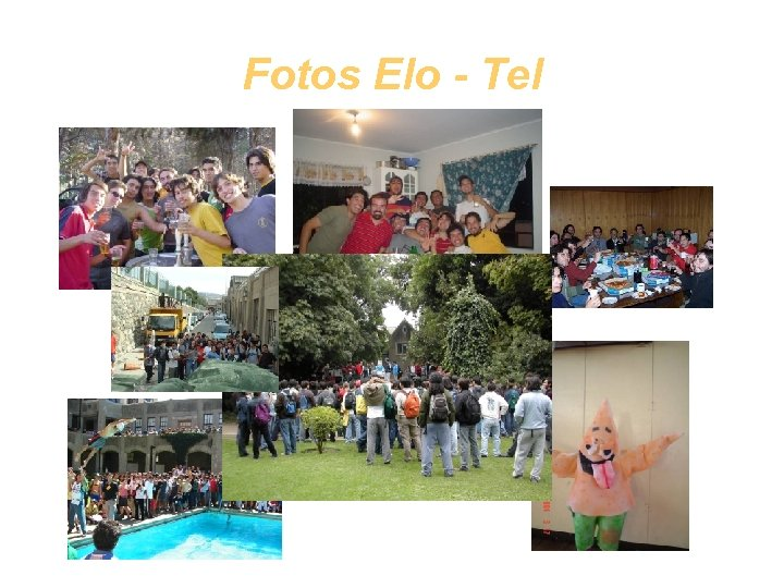 Fotos Elo - Tel