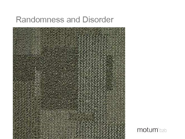 Randomness and Disorder