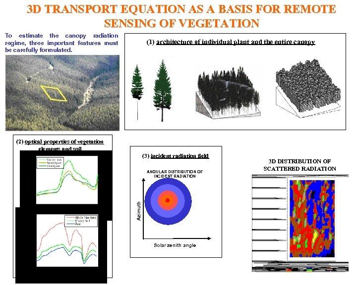 3 D TRANSPORT EQUATION AS A BASIS FOR REMOTE SENSING OF VEGETATION To estimate