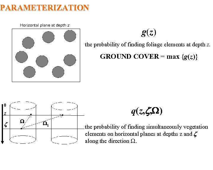 PARAMETERIZATION Horizontal plane at depth z g(z) the probability of finding foliage elements at