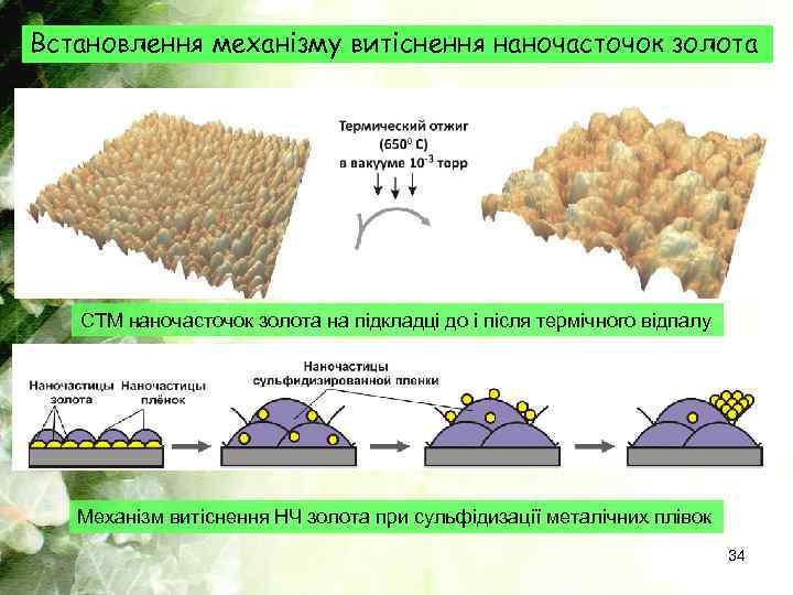 Встановлення механізму витіснення наночасточок золота СТМ наночасточок золота на підкладці до і після термічного