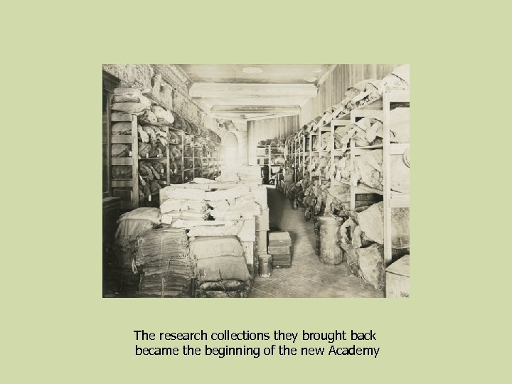 The research collections they brought back became the beginning of the new Academy