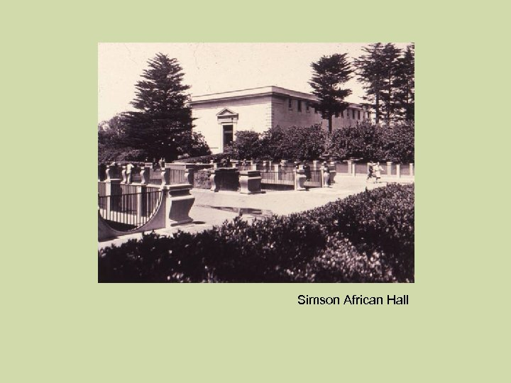 Simson African Hall