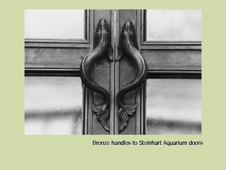 Bronze handles to Steinhart Aquarium doors