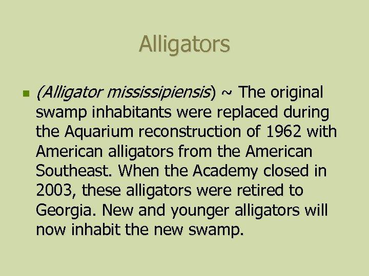 Alligators n (Alligator mississipiensis) ~ The original swamp inhabitants were replaced during the Aquarium