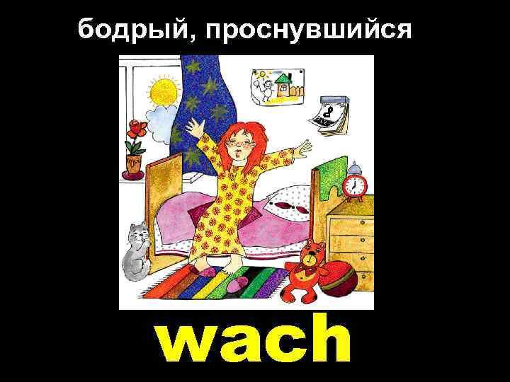 бодрый, проснувшийся wach