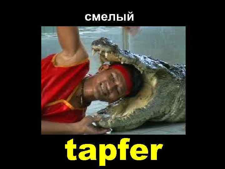 смелый tapfer