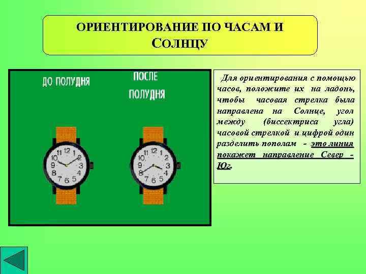 ОРИЕНТИРОВАНИЕ ПО ЧАСАМ И СОЛНЦУ Для ориентирования с помощью часов, положите их на ладонь,