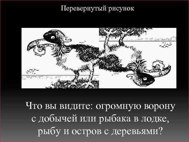 Перевернутый рисунок Что вы видите: огромную ворону с добычей или рыбака в лодке, рыбу