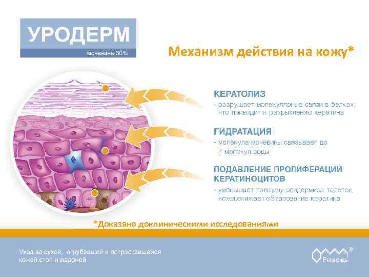Механизм действия на кожу* *Доказано доклиническими исследованиями