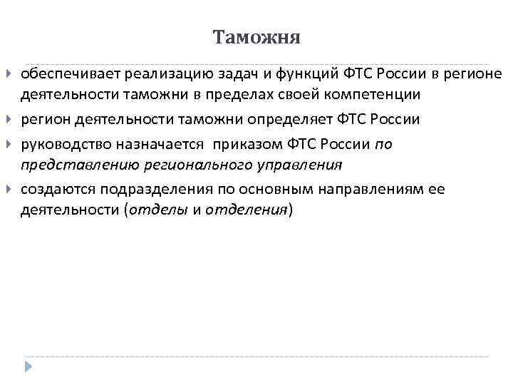 Таможня обеспечивает реализацию задач и функций ФТС России в регионе деятельности таможни в пределах