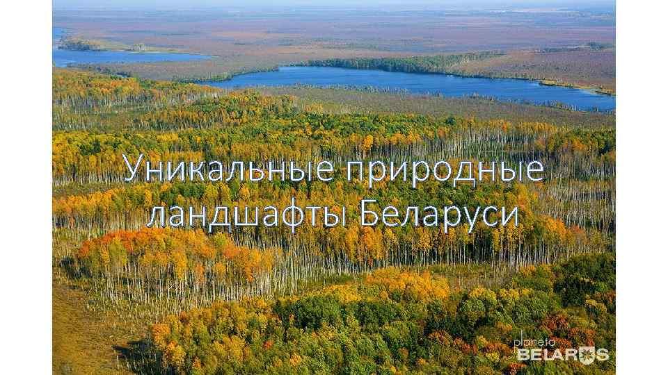 Уникальные природные ландшафты Беларуси