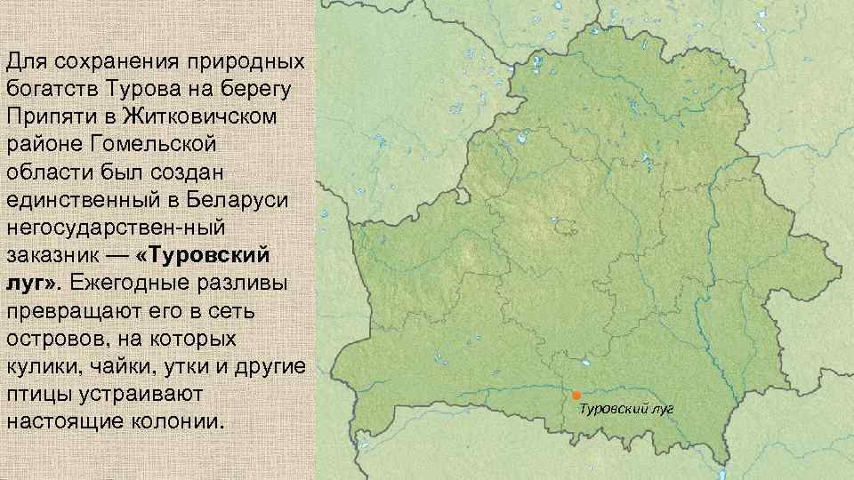 Для сохранения природных богатств Турова на берегу Припяти в Житковичском районе Гомельской области был
