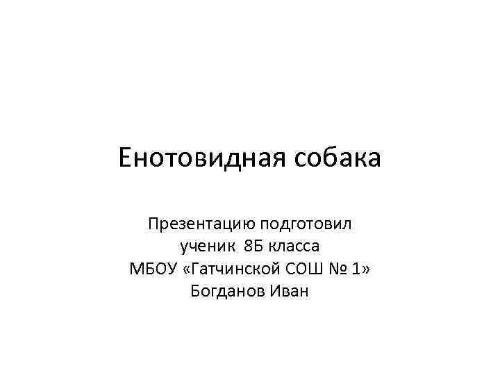 Енотовидная собака Презентацию подготовил ученик 8 Б класса МБОУ «Гатчинской СОШ № 1» Богданов