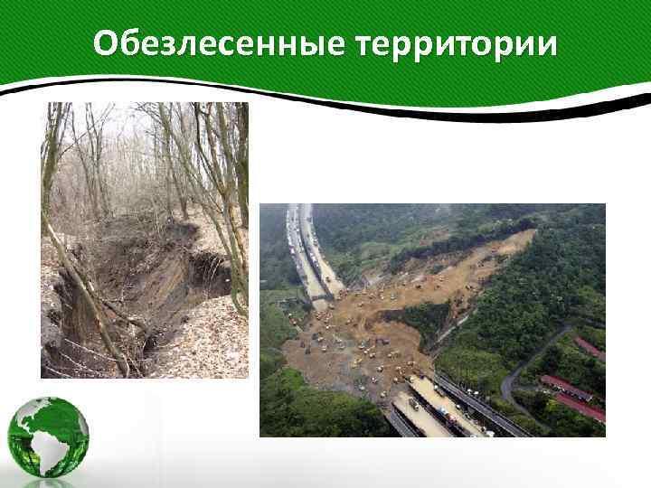 Обезлесенные территории