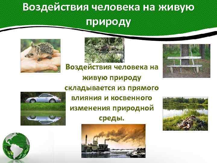 Воздействия человека на живую природу складывается из прямого влияния и косвенного изменения природной среды.