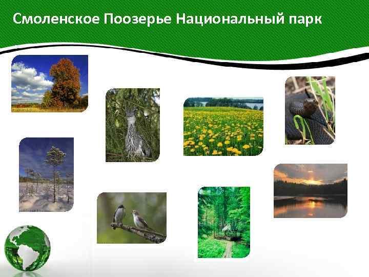 Смоленское Поозерье Национальный парк .