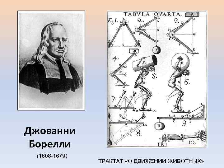 Джованни Борелли (1608 -1679) ТРАКТАТ «О ДВИЖЕНИИ ЖИВОТНЫХ»