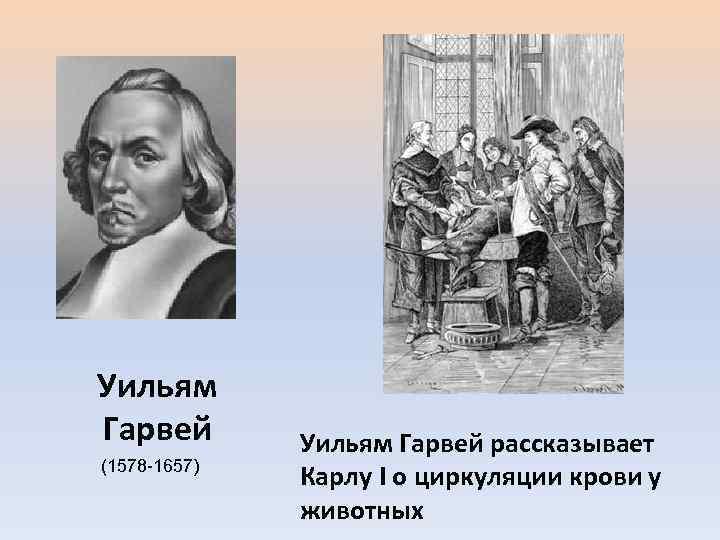 Уильям Гарвей (1578 -1657) Уильям Гарвей рассказывает Карлу I о циркуляции крови у животных