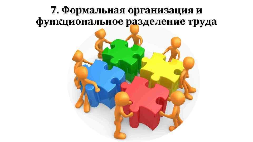 7. Формальная организация и функциональное разделение труда