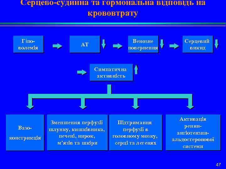 Серцево-судинна та гормональна відповідь на крововтрату Гіповолемія Венозне повернення АТ Серцевий викид Симпатична активність
