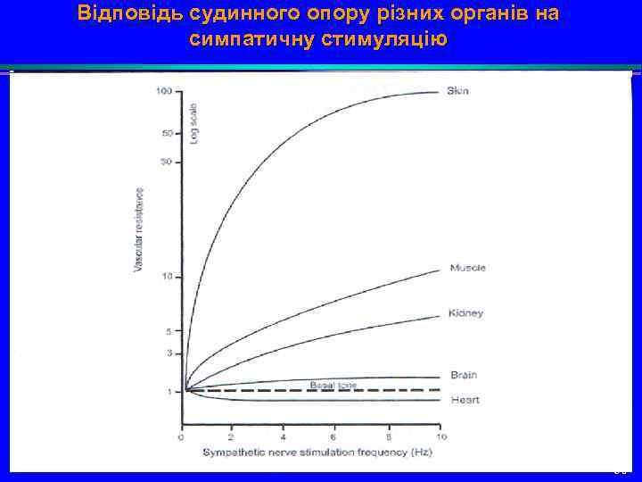 Відповідь судинного опору різних органів на симпатичну стимуляцію 50