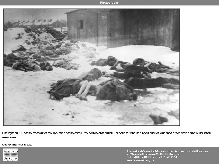 Photographs Photograph 12. At the moment of the liberation of the camp, the bodies