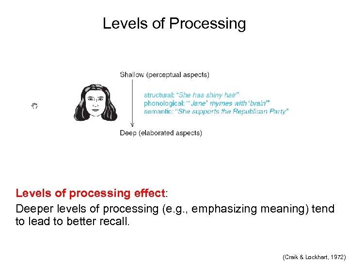 Levels of Processing Levels of processing effect: Deeper levels of processing (e. g. ,