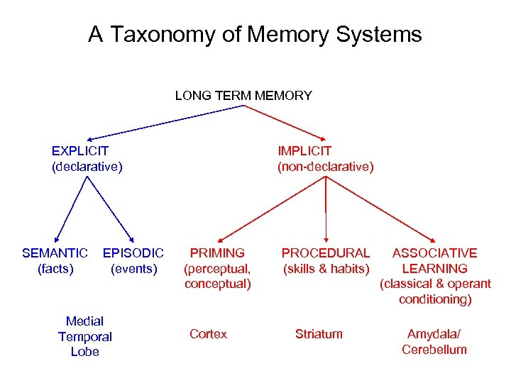 A Taxonomy of Memory Systems LONG TERM MEMORY EXPLICIT (declarative) SEMANTIC (facts) EPISODIC (events)