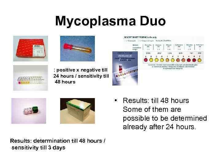 Mycoplasma Duo : positive x negative till 24 hours / sensitivity till 48 hours