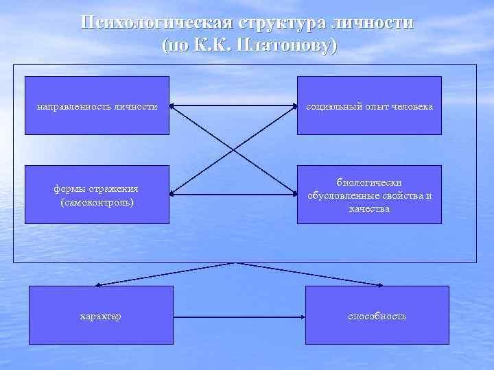 Психологическая структура личности (по К. К. Платонову) направленность личности социальный опыт человека формы отражения