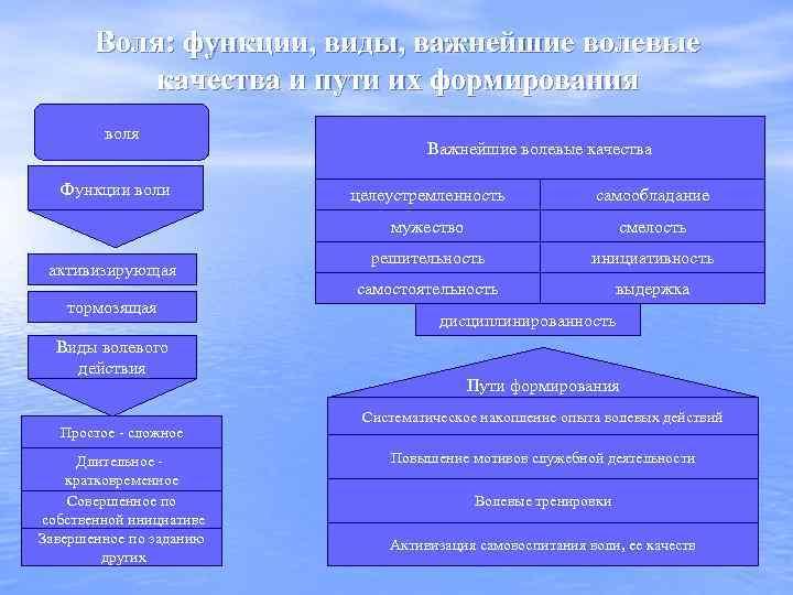Воля: функции, виды, важнейшие волевые качества и пути их формирования воля Функции воли Важнейшие