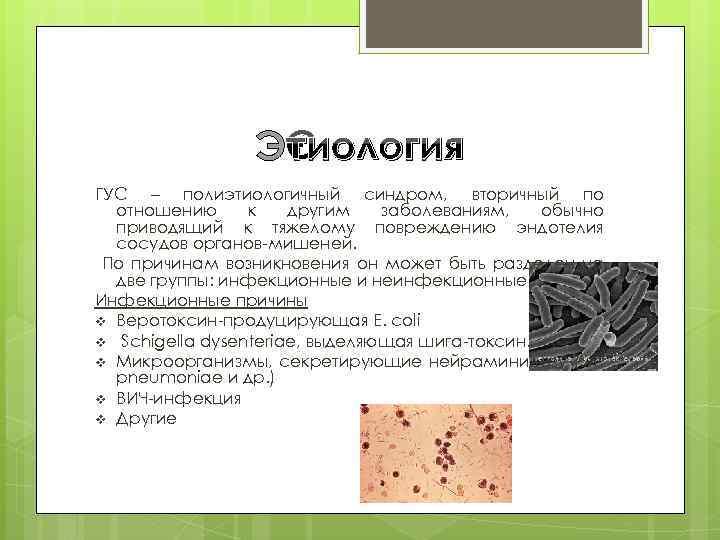Этиология ГУС – полиэтиологичный синдром, вторичный по отношению к другим заболеваниям, обычно приводящий к
