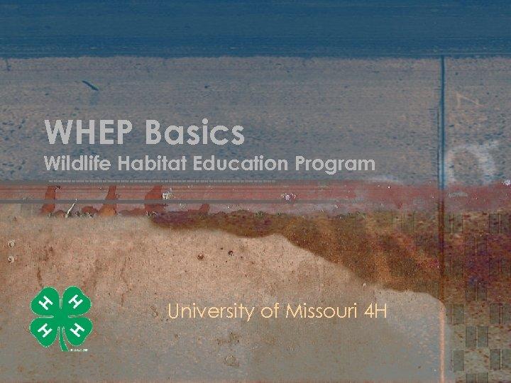 WHEP Basics Wildlife Habitat Education Program University of Missouri 4 H