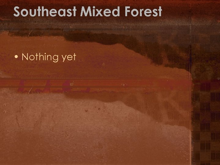 Southeast Mixed Forest • Nothing yet