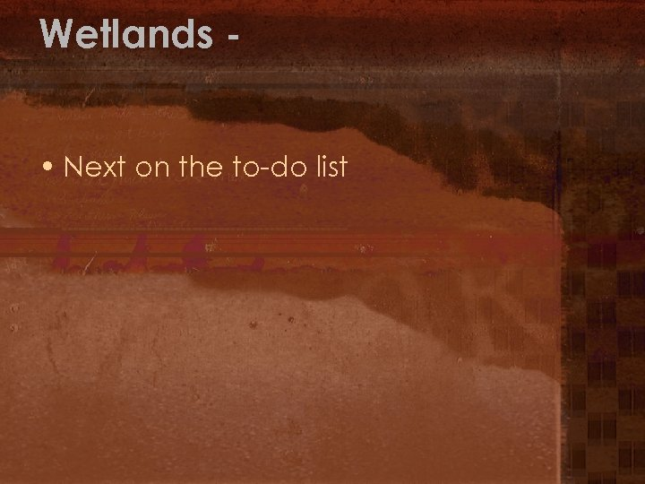 Wetlands • Next on the to-do list
