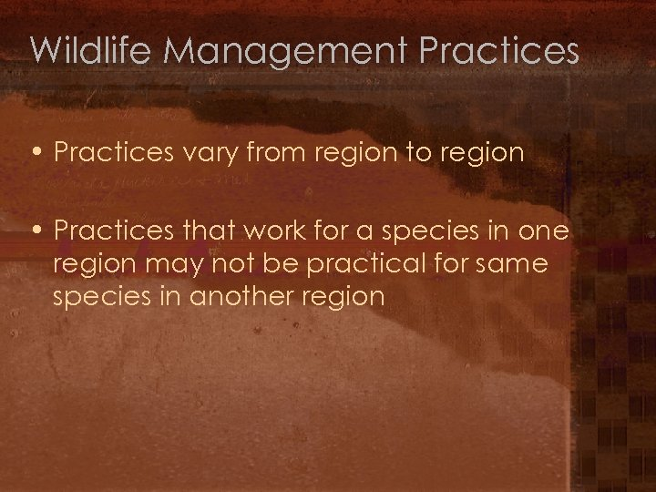 Wildlife Management Practices • Practices vary from region to region • Practices that work