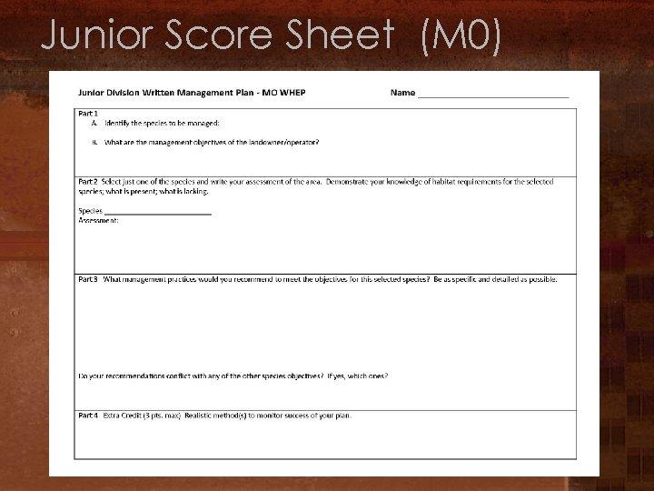 Junior Score Sheet (M 0)