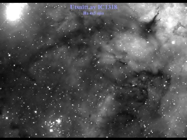 Utsnitt av IC 1318 Ha 4 x 5 min
