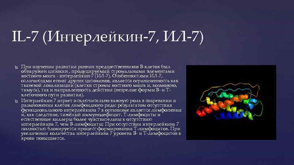 IL-7 (Интерлейкин-7, ИЛ-7) При изучении развития ранних предшественников В-клеток был обнаружен цитокин , продуцируемый