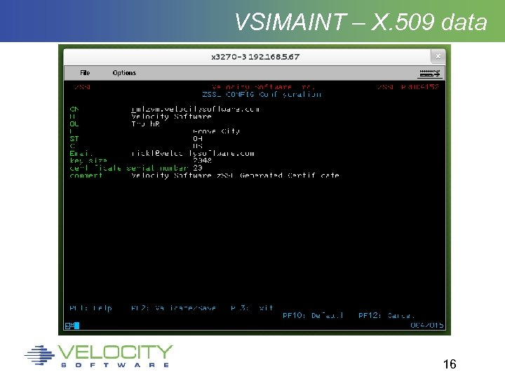 VSIMAINT – X. 509 data 16