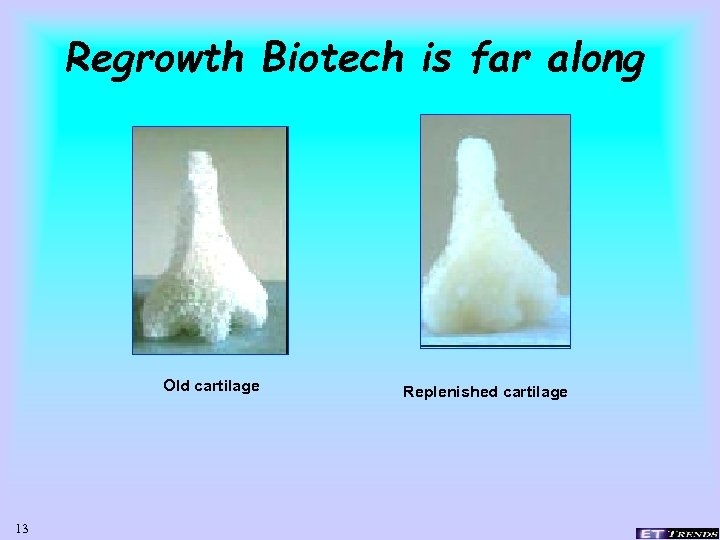Regrowth Biotech is far along Old cartilage 13 Replenished cartilage