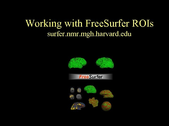 Working with Free. Surfer ROIs surfer. nmr. mgh. harvard. edu